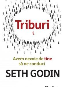 Triburi, Seth Godin